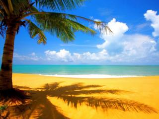 обои Солнечный берег фото