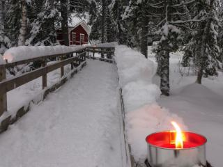 обои Зима за городом фото