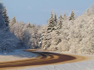 обои Изгиб дороги среди зимних елей фото