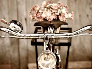 обои Велосипед и букет цветов фото