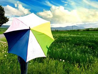 обои Летом в поле,   под зонтом фото