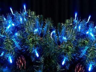 обои Голубой новогодний свет фото