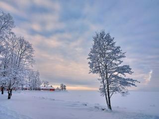 обои Зима в деревне фото