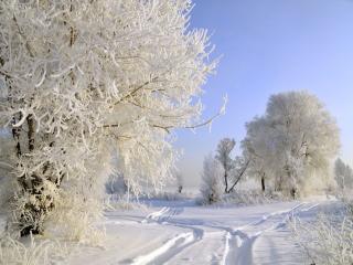 обои Зимние дороги фото
