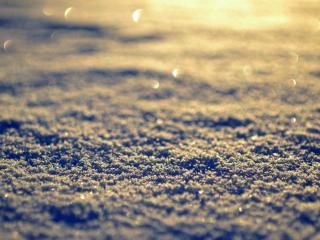 обои Снег в вечернем свете зимы фото