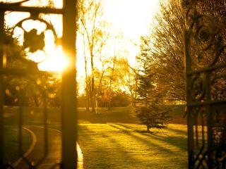 обои У ворот парка на закате,   тропинка в парк фото