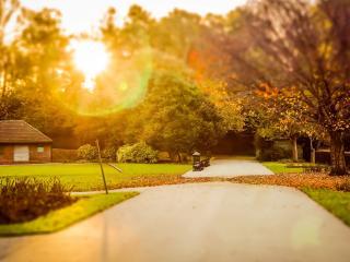 обои Встреча заката в осеннем парке,   аллея фото
