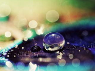 обои Капля воды в бликах,   макро фото