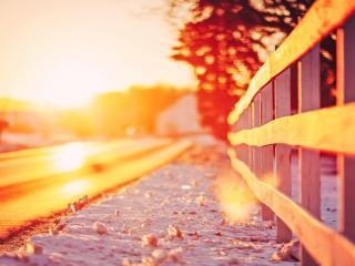 обои Весеннее солнце над дорогой фото