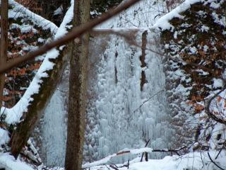 обои Замерзший водопад среди деревьев фото