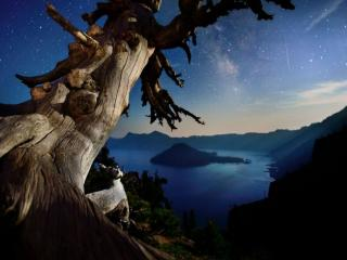 обои Озеро Крэйтер в Орегоне. США фото
