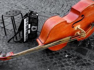 обои Пара уличных инструментов на мостовой фото