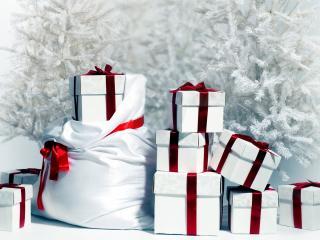 обои Куча подарков под белой елкой фото
