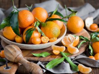 обои Разные мандарины с листьями на блюдце фото