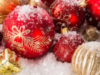 обои Красивые шары присыпанные снегом фото