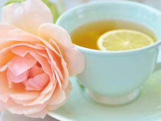 обои Розовая роза и чай с лимоном фото