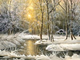 обои Лесной зимний ручей фото