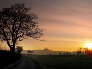обои Сельская местность,   дорога,   закат фото