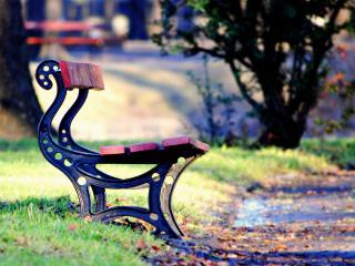 обои Скамья в парке,   ранняя осень фото