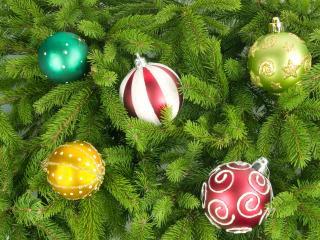 обои Пятерка разных шаров на елке фото