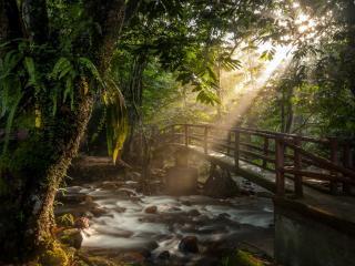 обои Мост над бурлящим ручьем фото
