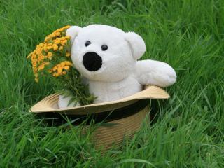 обои для рабочего стола: Белый медвежонок в шляпе на траве