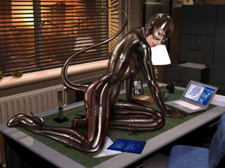 обои Черная кошка на столе в офисе фото