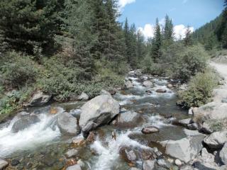 обои Горный Алтай, ручей фото
