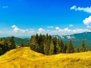 обои Одинокий домик на горной поляне фото