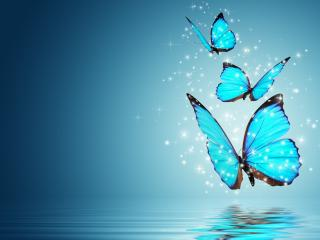 обои Танец голубых бабочек фото