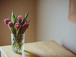 обои Тюльпаны в вазе на деревянном столике фото