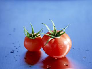 обои Пара красных помидоров фото
