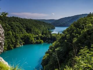 обои Река окруженная лесом фото