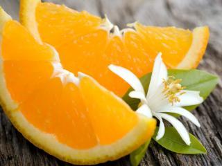 обои Дольки апельсина и цветок фото