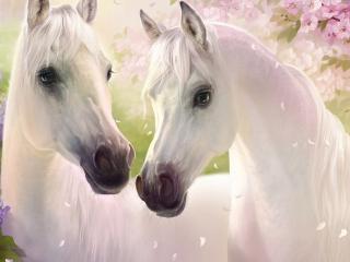 обои Лошадинная любовь фото