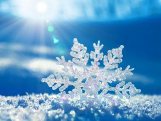обои Снежинка на голубом фото