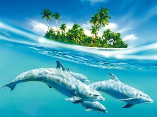 обои Небесные дельфины фото