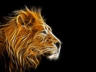 обои Горящий лев фото