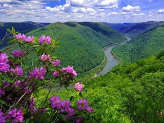 обои Живописная река среди холмов фото