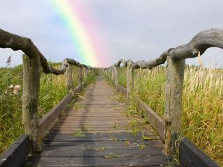 обои Деревянный мостик к радуге фото