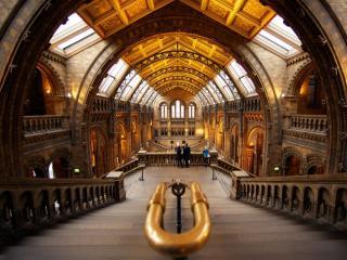 обои Национальный исторический музей. Лондон фото