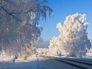 обои Снег,   солнце и дорога фото