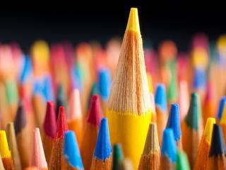 обои Сборище карандашей фото