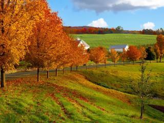 обои Осенняя дорога на окраине деревушки фото