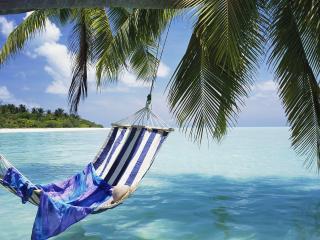 обои Полосатый гамак под пальмой в океане фото