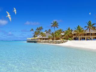 обои Пляж,   белый песок,   чайки фото