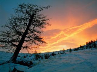 обои Утро в горах Алтая фото