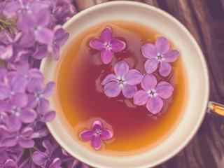 обои Чай с цветами сирени фото