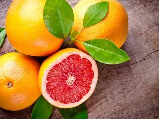 обои Сочные апельсины фото
