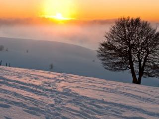 обои Зима,   снежный склон и следы на закате фото